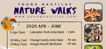Nature Walks (Apr - June 2020)