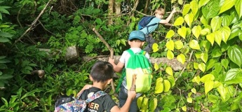 Forest One-Day Camp (25-Apr)