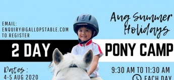 August Summer Holidays: 2 Day Pony Camp
