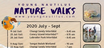 Nature Walks (July - Sept 2020)