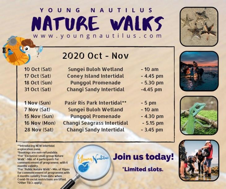 Nature Walks (Oct - Dec 2020)