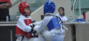 Sports Taekwondo