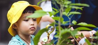 Nature Explorers Trial