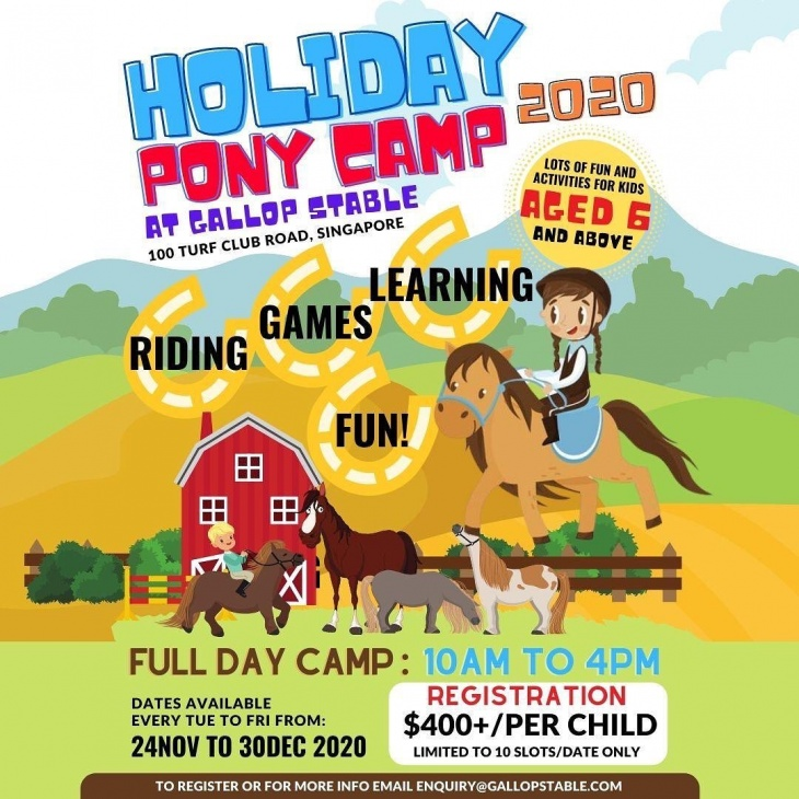 Holiday Pony Camp 2020 @Gallop Stable Horse City