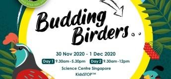 Budding Birders @KidsSTOP, by Science Centre Singapore