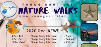 SG Nature Walks (Dec 2020)
