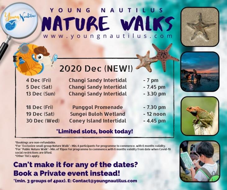 SG Nature Walks (Dec 2020)