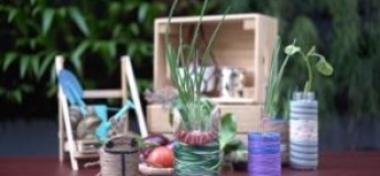 Plant-enstein: Growing Kitchen Scraps & Upcycling Planters (A Hands-on Workshop)