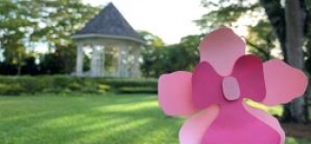 Singapore Botanic Gardens: Our Heritage (A Tour & Craft Activity)