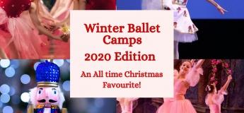 Winter Ballerina Bootcamp 2020 @The Graceful Swan