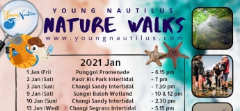 SG Nature Walks (Jan - Feb 2021)