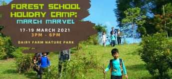 FS Holiday Camp 2021: March Marvel