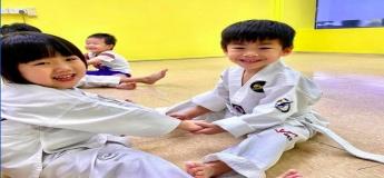 Home Enrichment - Taekwondo At Home