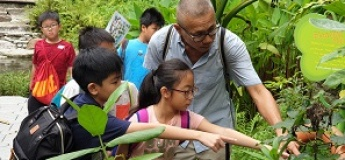 Celebrating Wildlife Series: Tree Homes