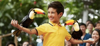 High Flyers Show @Jurong Bird Park