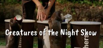 Creatures of the Night Show @Night Safari