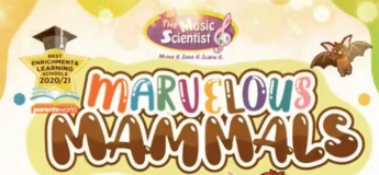 Marvelous Mammals!