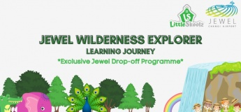Jewel Wilderness Explorer Learning Journey