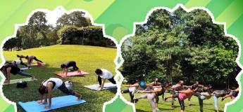 OTH Yoga: Hatha Beginner