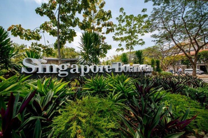 Rain Forest Tour