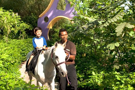 Pony Ride @ Singapore Zoo