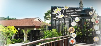 Sentosa Nature Discovery