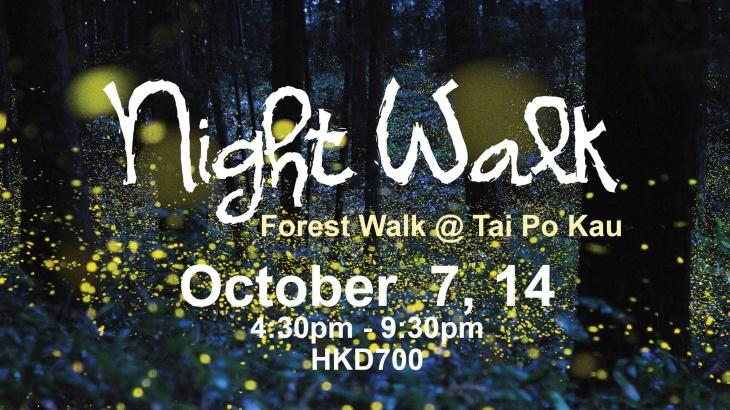 Mid-Autumn Festival Night Walk @ Tai Po Kau