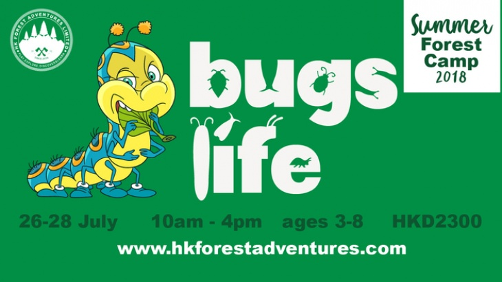Summer Forest Camp - Bugs Life