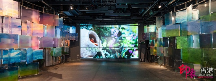 D Exhibition Hong Kong : Exhibition on hong kong ∞ impression tickikids hong kong