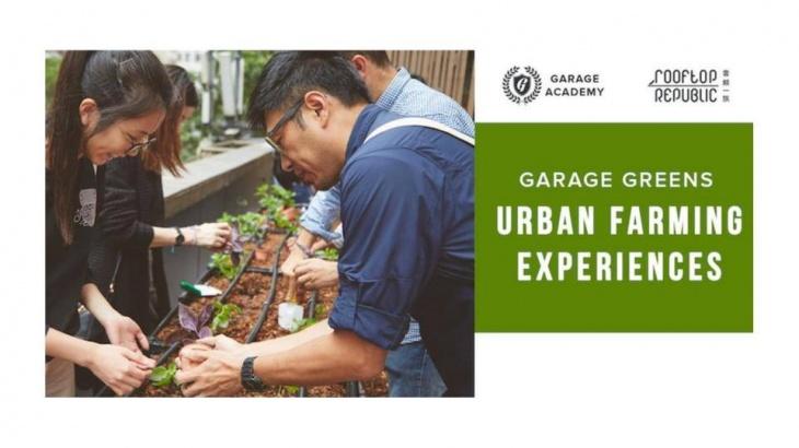 Garage Greens Urban Farming Experiences
