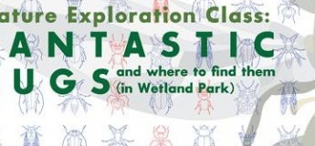 Nature Exploration Class - Fantastic bugs and where to find them