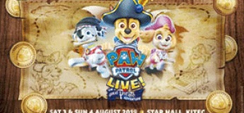 """PAW Patrol Live! """"The Great Pirate Adventure!"""""""