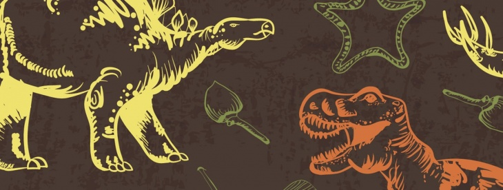 The Dinosaur Footprints