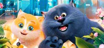 Cats @ Cinema City