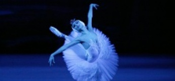 Ballet in Cinema - Swan Lake