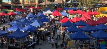 February Discovery Bay Market