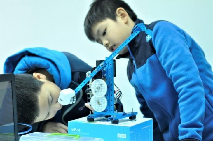RoboCode Developer (Age 12+)