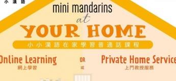 Mini Mandarins at your home