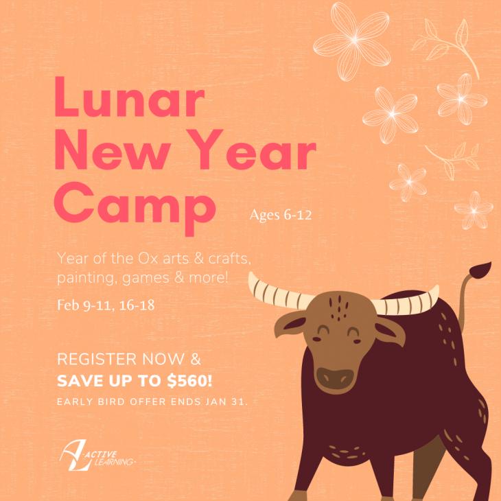 Lunar New Year Camp