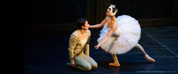 Ballet Classics for Children: Swan Lake
