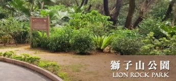 The Lion Rock Park