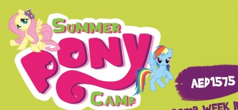 Summer Pony Camp 2019