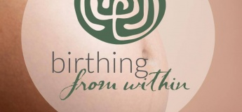 Birthing from Within Basic Skills + Practices Workshop