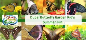Dubai Butterfly Garden Kid's Summer Fun
