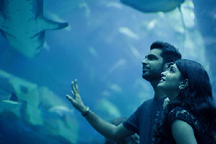 UAE Resident Offer @ Dubai Aquarium & Underwater Zoo