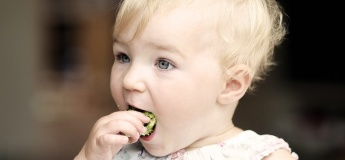 Intro To Solid Foods Workshop