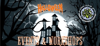 Events and Workshops @ Dubai Garden Centre: Halloween