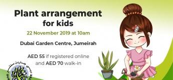 Plant Arrangement for Kids
