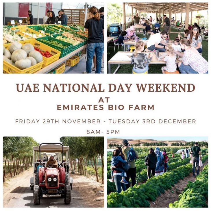 UAE National Day weekend at the farm