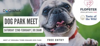 Dog Park Meet